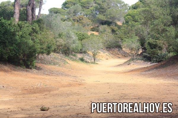 Parque de Las Canteras, en Puerto Real.
