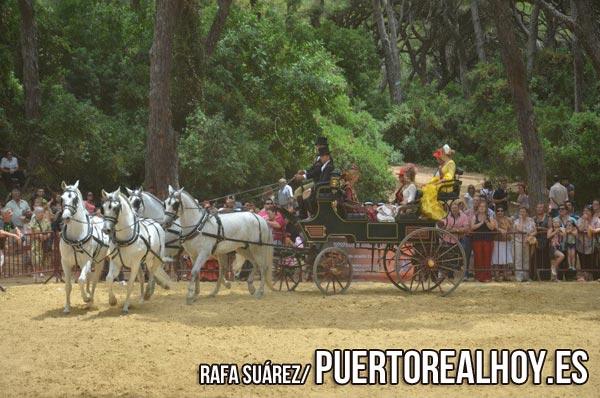 20150607_cultura_feria_jornada_caballo_02