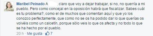 20150717_politica_m_peinado_fb_08