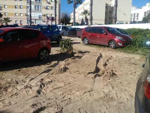Coches aparcados junto al brote de Ombú, junto a La Cachucha.