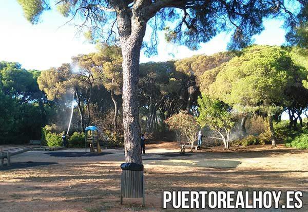 Dos incendios afectan a la pinaleta derqui y las canteras puerto real hoy puerto real hoy - Las canteras puerto real ...