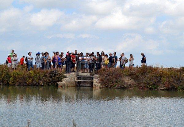 Imagen de una visita a la salina La Esperanza de Puerto Real.